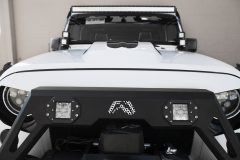 American_Custom_Jeep_AllAmerican_19